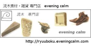 流木素材・雑貨 専門店 evening calm